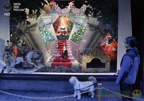 Предновогодние витрины магазинов Нью-Йорка