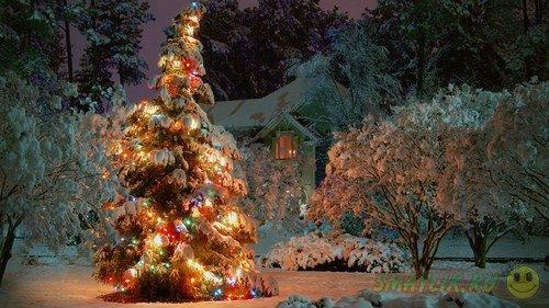 Зима - особенное время  года полное чудес