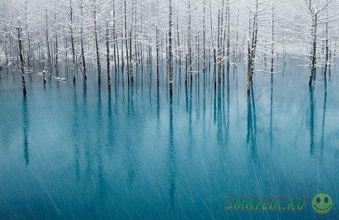 Чарующе красивые зимние пейзажи