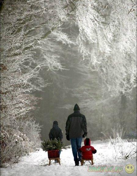 Красивая зима в фотографиях