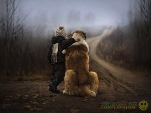 Ребята и зверята в фотографиях Елены Шумиловой