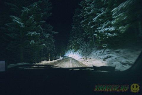 Into The Wild - снимки сделанные в  экстремальных условиях