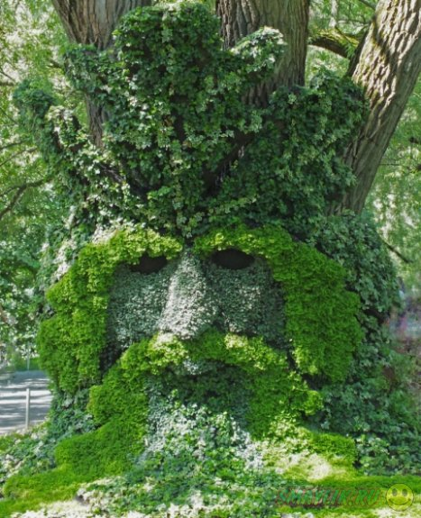 Произведения искусства из растений в Ботаническом саду Монреаля