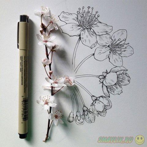 Весенние цветы в рисунках художника