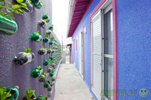 Яркие краски для унылой стены в переулке