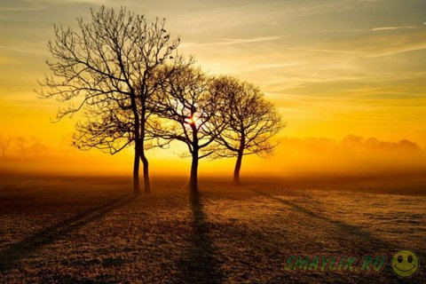 Пейзажи нашей Земли