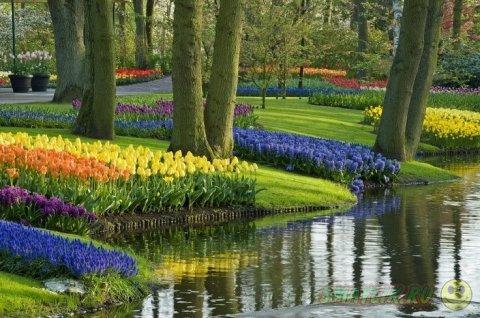 Самые красивые цветочные сады и парки