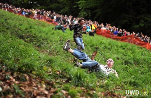 В Глостершире  состоялись гонки за сырными головками