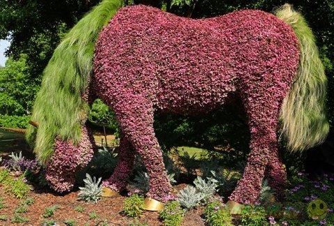 Искуство Mosaiculture в ботанических садах Атланты