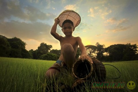 Красочный мир Таиланда в работах Саравута Вансета