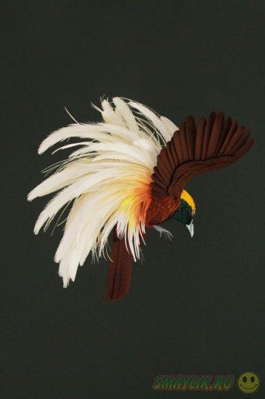 Невероятно реалистичные птички из бумаги, созданные колумбийской художницей