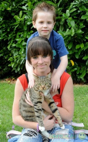 В Британии кот Смадж претендует на звание «Самая храбрая кошка»