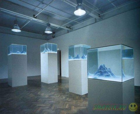 Удивительные пейзажи в обычных аквариумах