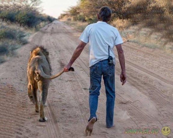 Необычный лучший друг у любителя львов из Южной Африки
