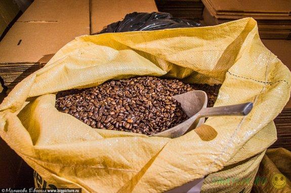 Кофе — одна из важнейших сельскохозяйственных культур Доминиканской Республики