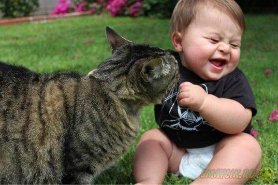 Коты - самые заботливые животные для детей