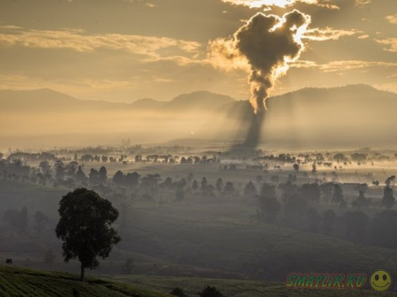 Самые яркие снимки National Geographic