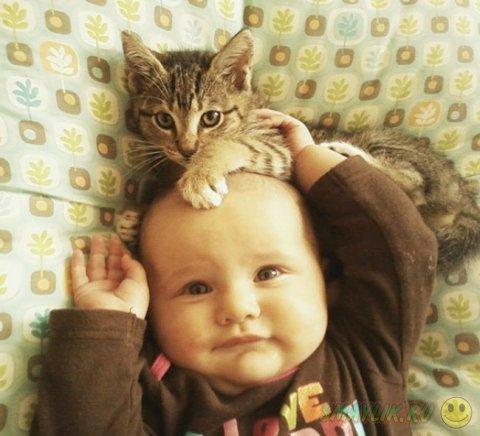 Коты могут быть самыми заботливыми животными для малыша