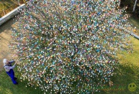 Деревце, украшенное пасхальными яичками