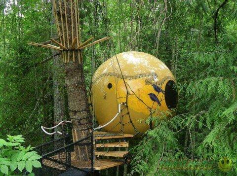 Домики на дереве, о которых можно только мечтать