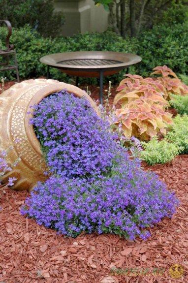 Варианты дизайна, которые помогут украсить цветочную клумбу